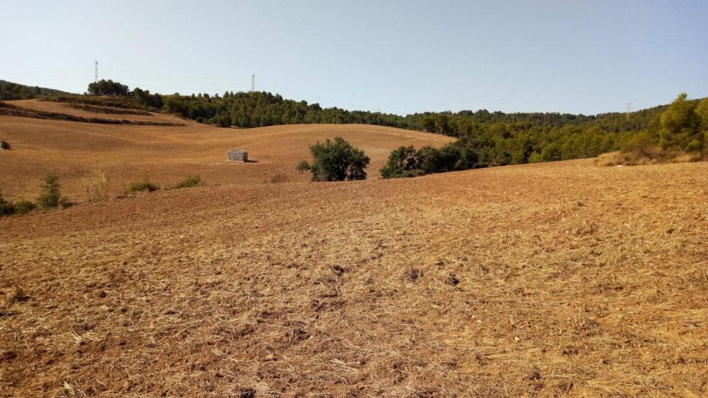 Extensions de terra amb empremta humana