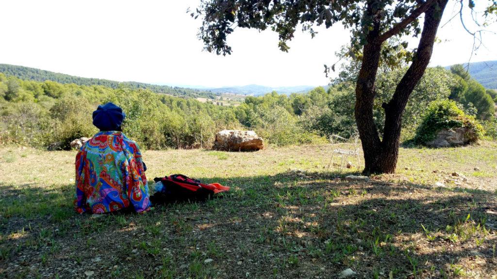Un descans a l'ombra d'una alzina